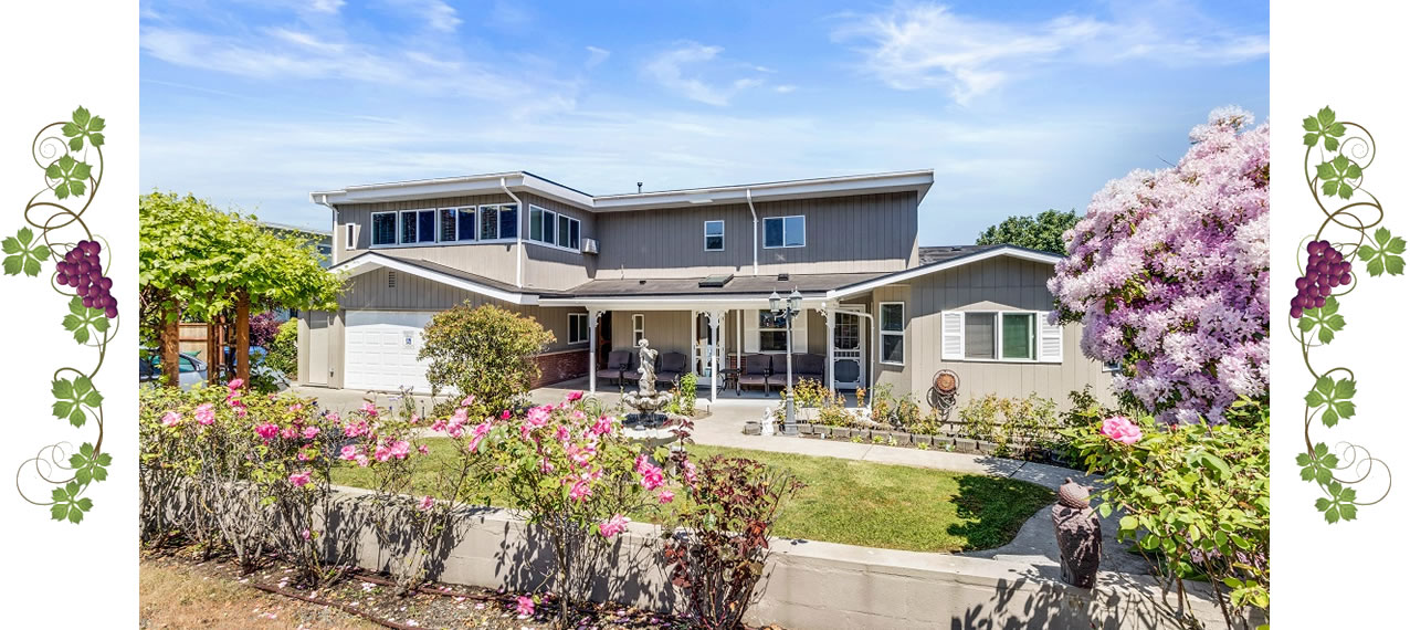 Courtyard in front yard with a white fountain and an arched trellis with grapes.
