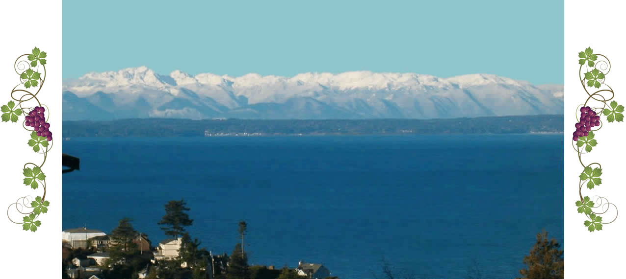 View of the Puget Sound and snowy Olympic Mountains in the distance.